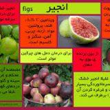 میوه های قرآنی ۱