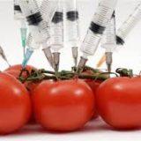 عوارض ناشناخته محصولات دستکارى شده ژنتیکى