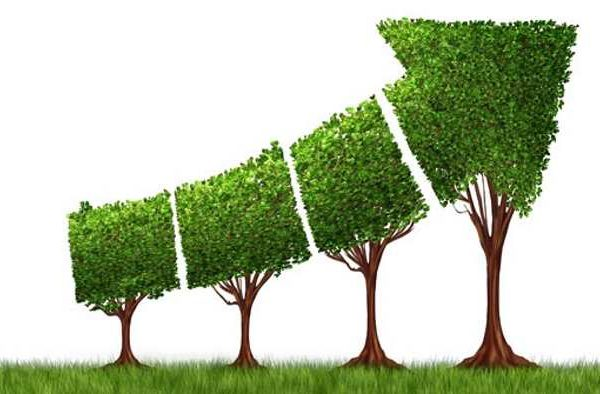 یک دقیقه برای یک عمر : کیفیت رشد