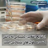 سلول بنیادی