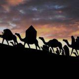 مظلومیت حضرت زینب(س) و اهل بیت بعد از اباعبدالله(ع)